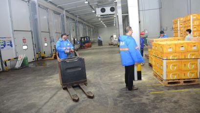 Dịch vụ vận chuyển hàng lạnh từ Cần Thơ